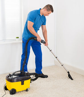 image of carpet cleaner